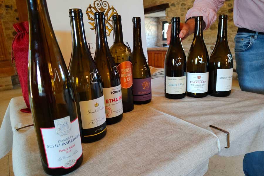 i vini rossi degustati alla cieca presso tenuta la presa